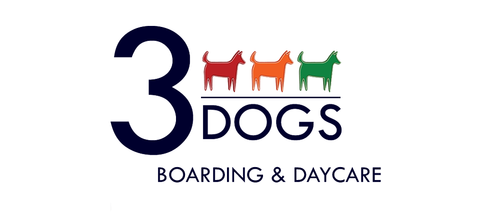 SEO client: 3 Dogs Boarding & Daycare