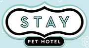 SEO client: Stay Pet Hotel